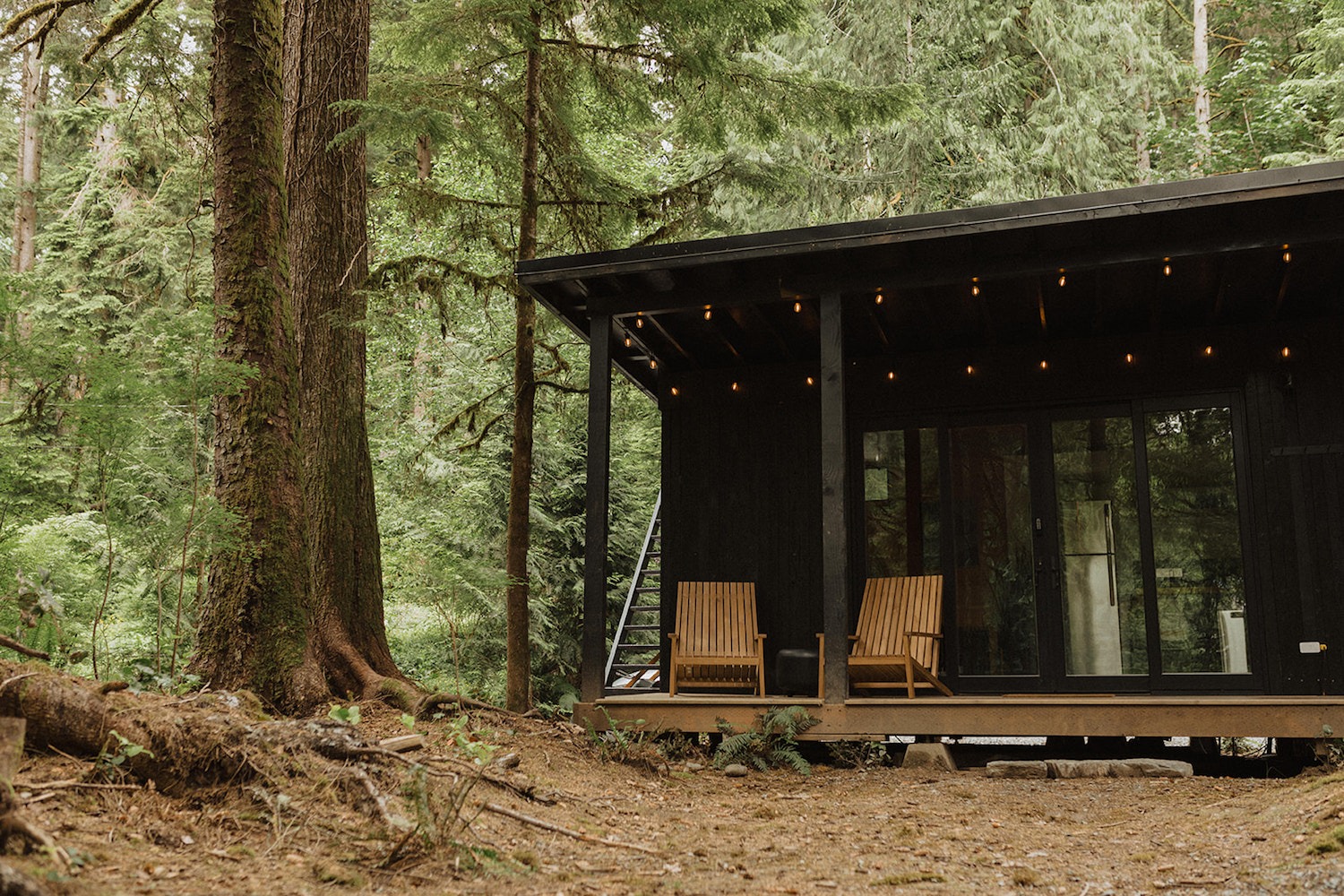 Cabin on Stilts in the Woods, a top Airbnb wedding venue in Washington State